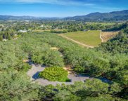 2486 Spring Mountain  Road, St. Helena image