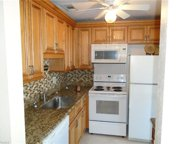 1109 Tropic TER, North Fort Myers image