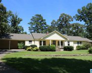 201 Country Ln, Pell City image