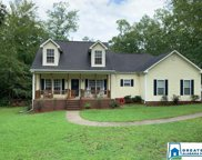 223 Pine Hill Dr, Columbiana image