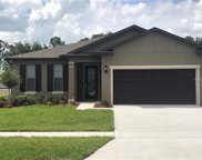 8909 Hinsdale Heights Drive, Polk City image