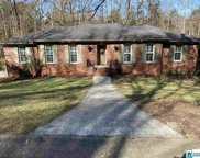 2217 Mountain Creek Trl, Hoover image