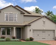16306 Hyde Manor Drive, Tampa image