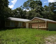 19511 Slater RD, North Fort Myers image