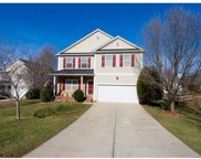 3419  Pickney Bluffs, Fort Mill image