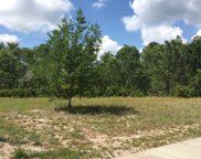 1028 Muscovy Pl., Conway image