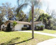 226 Faithway Drive, Seffner image