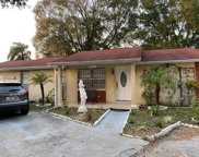 8212 Olivewood Place, Tampa image