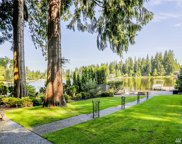 8205 313th Place NW, Stanwood image