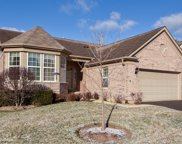 9342 Dunmore Drive, Orland Park image
