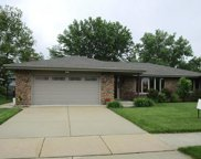 7825 Sycamore Drive, Orland Park image