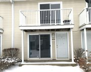 453 Meadow Green Lane Unit 453, Round Lake Beach image