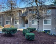 200 Mountain Park Blvd SW Unit A103, Issaquah image
