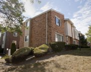 9650 South Karlov Avenue, Oak Lawn image