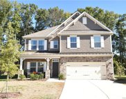 2009  Cantrell Court, Stallings image
