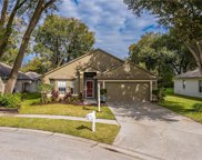 607 Valencia Park Drive, Seffner image