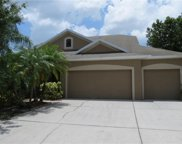 12905 Cattail Shore Lane, Riverview image