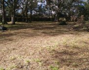 14508 Berkford Avenue, Tampa image