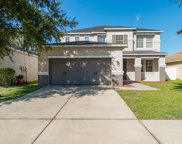 11254 Running Pine Drive, Riverview image
