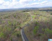 845 Stone Ridge Drive Unit 19 & 20, Springville image