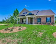 2224 Wood Stork Dr., Conway image