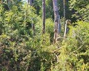 10508 Seaview Drive, Anderson Island image