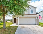32308 Fish Hook Loop, Wesley Chapel image