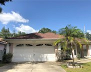 1007 Royal Oaks Drive, Apopka image