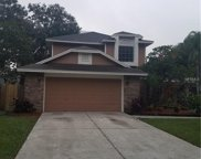 15111 Craggy Cliff Street, Tampa image