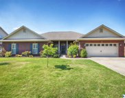 115 Legacy Trace Drive, Huntsville image