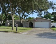 2195 Egret Drive, Clearwater image