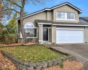 224 Flametree Circle, Windsor image