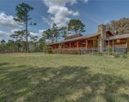 26225 Pitts Road, Eustis image