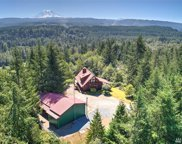 25005 166th Ave E, Orting image
