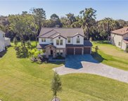 718 Primrose Willow Way, Apopka image