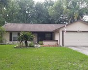 7605 N Sanibel Circle, Temple Terrace image