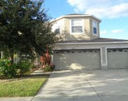 13226 Graham Yarden Drive, Riverview image