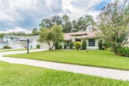 3630 Cold Creek Drive, Valrico image