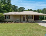 802 Fred Terry Road, Locust Fork image