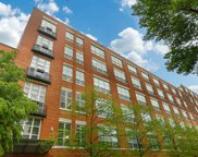 1735 North Paulina Street Unit 309, Chicago image