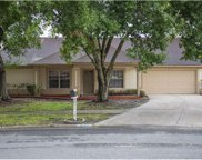 9713 Pleasant Run Way, Tampa image