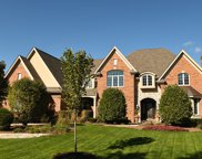 10860 Crystal Meadow Court, Orland Park image