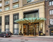 800 North Michigan Avenue Unit 4301, Chicago image