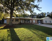 101 Ash Ave, Pell City image