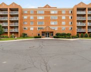 7450 North Waukegan Road Unit 207, Niles image