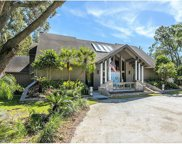 11803 Carrollwood Village Cove, Tampa image