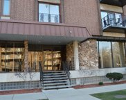 8359 West Addison Street Unit 204, Chicago image
