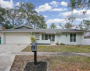 213 Meadowcross Drive, Safety Harbor image