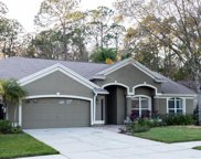 4328 Worthington Circle, Palm Harbor image