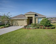 12421 Hammock Pointe Circle, Clermont image